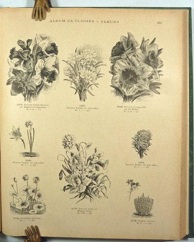 ALBUM DE CLICHÉS, by (Trade Catalogue - Horticultural Printing) VILMORIN-ANDRIEUX & Cie.