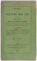 HISTOIRE ET CULTURE DES LYS. by (Lilies and Melons) THIERY, M.
