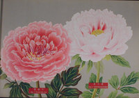 THE PICTURE BOOK OF PEONIES. by (Peonies)