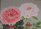 Another image of THE PICTURE BOOK OF PEONIES. by (Peonies)