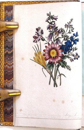PROMENADE SENTIMENTALE ET SCIENTIFIQUE AU JARDIN D'HIVER D'UN PAPILLON VOYAGEUR by (Color plates) EDMOND (DE SÉRIGNY), M.