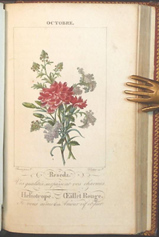 le langage des fleurs by language of flowers cortambert louise. Black Bedroom Furniture Sets. Home Design Ideas