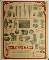 DENAIFFE & FILS  Advertising Poster. by (Seedsmen's Poster) (DENAIFFE & FILS)